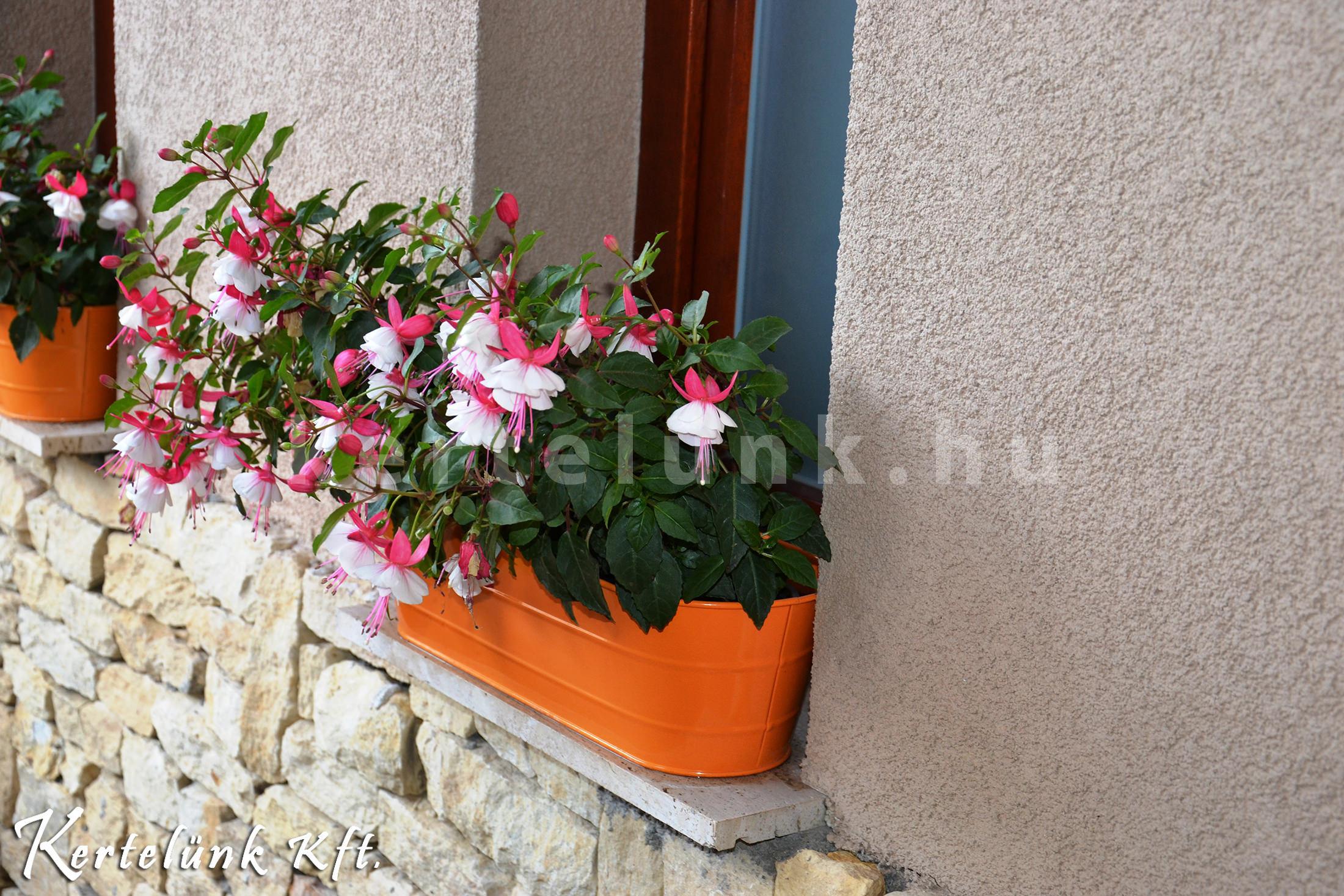 Színes virágok teszik meghitté a környezetet.