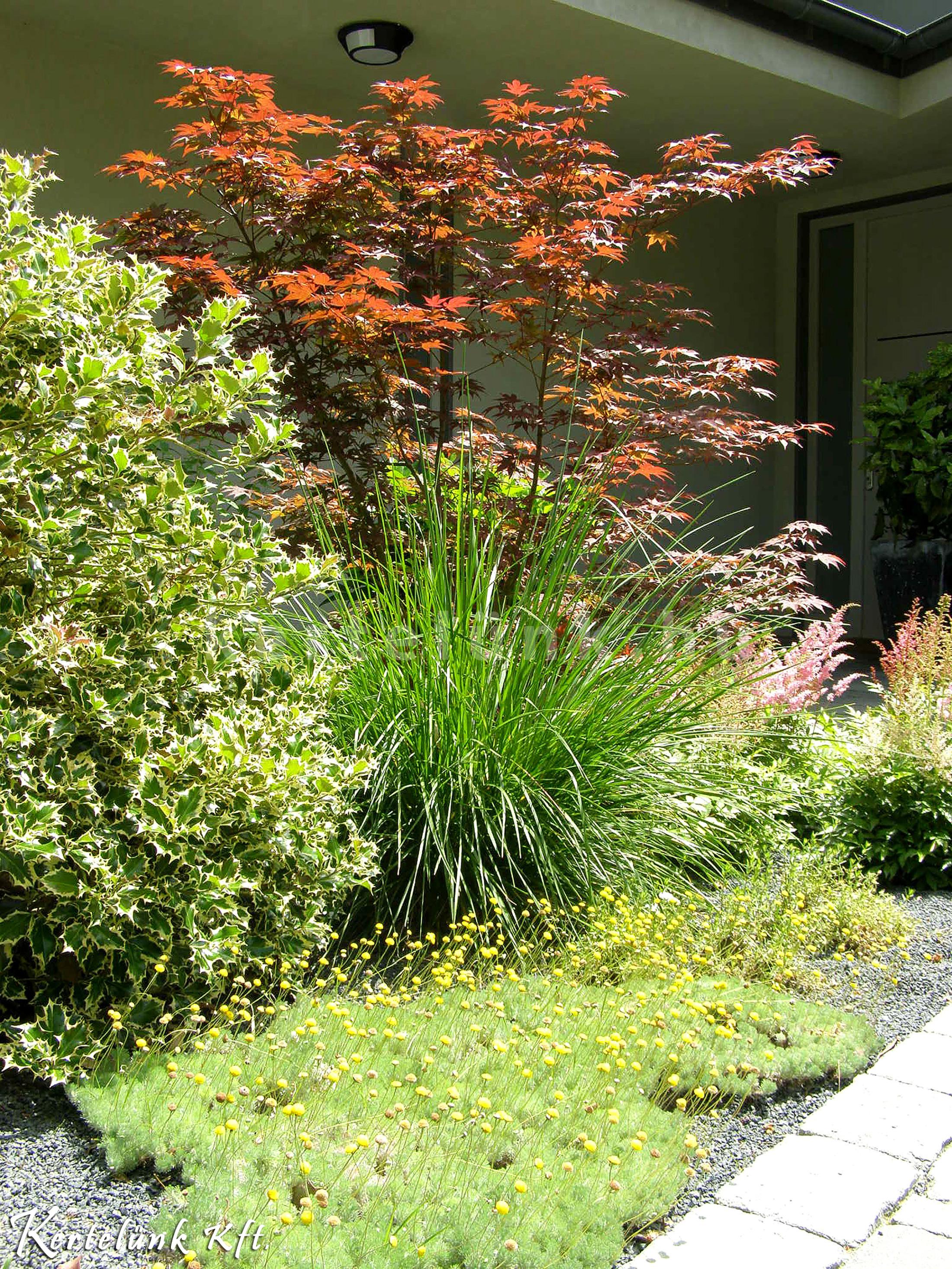 A legtöbb kertünk könnyen fenntartható.
