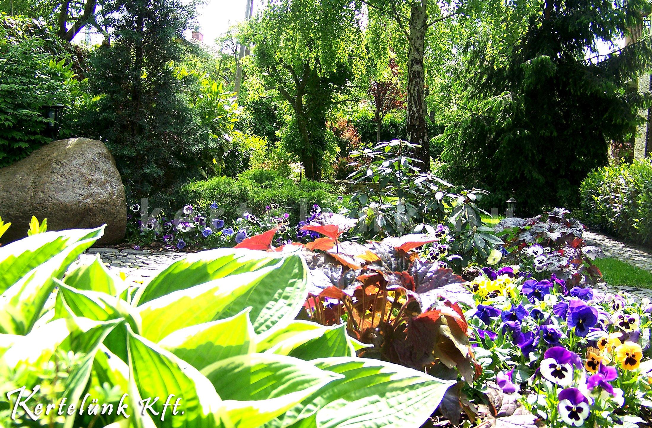 Sok színes virág teszi változatossá a kerteket.