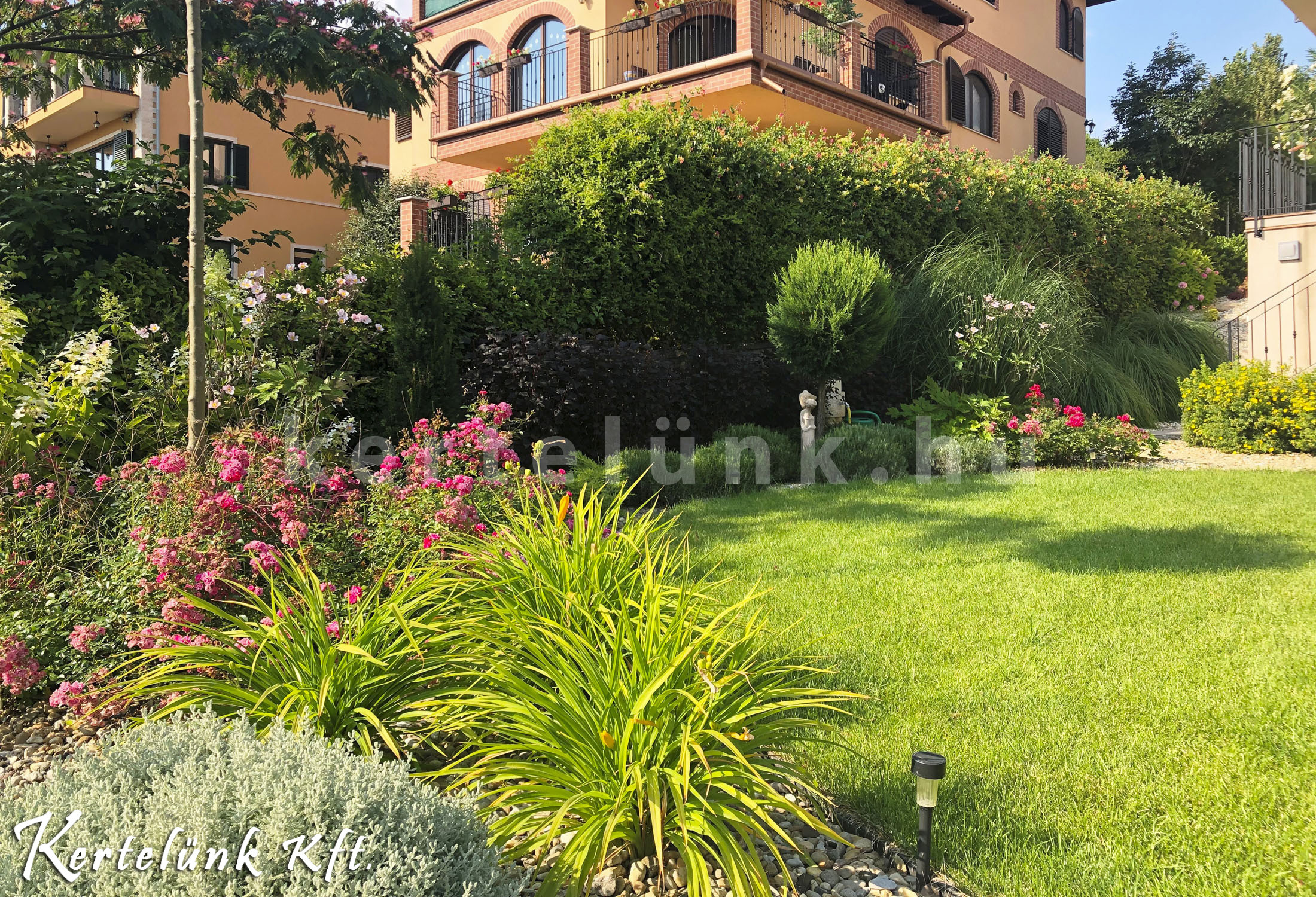 Így néz ki egy 2 éves mediterrán kert!