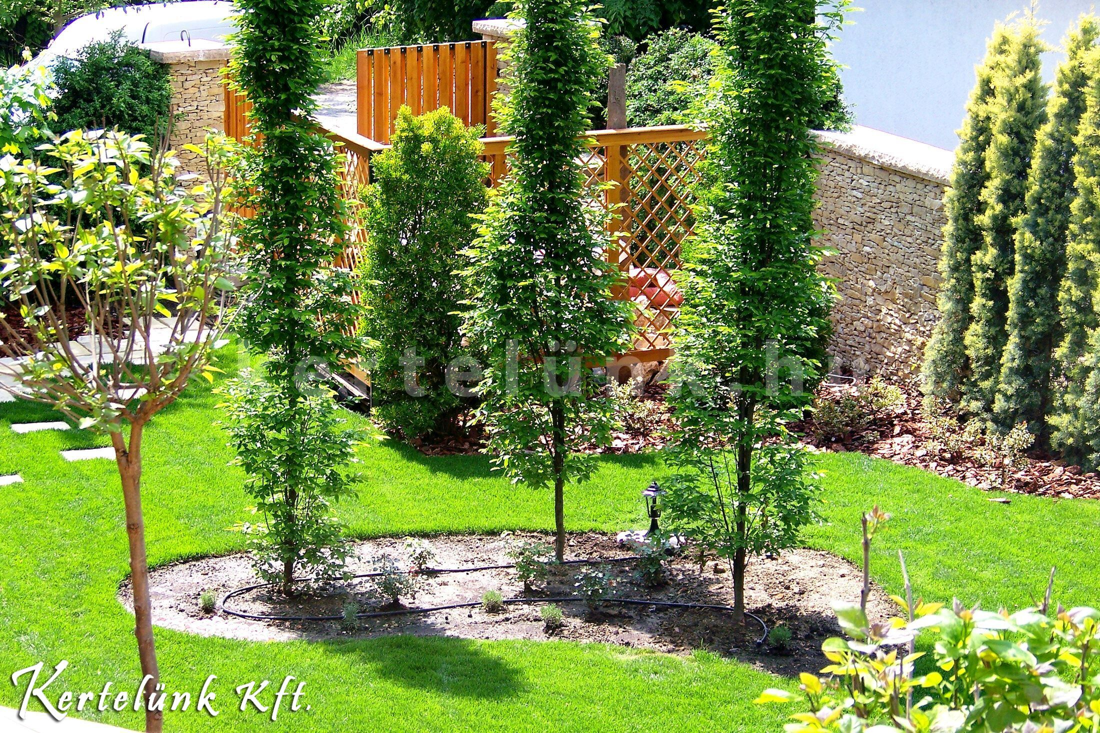 Oszlopos növényekkel térelválasztás a mediterrán kertben.