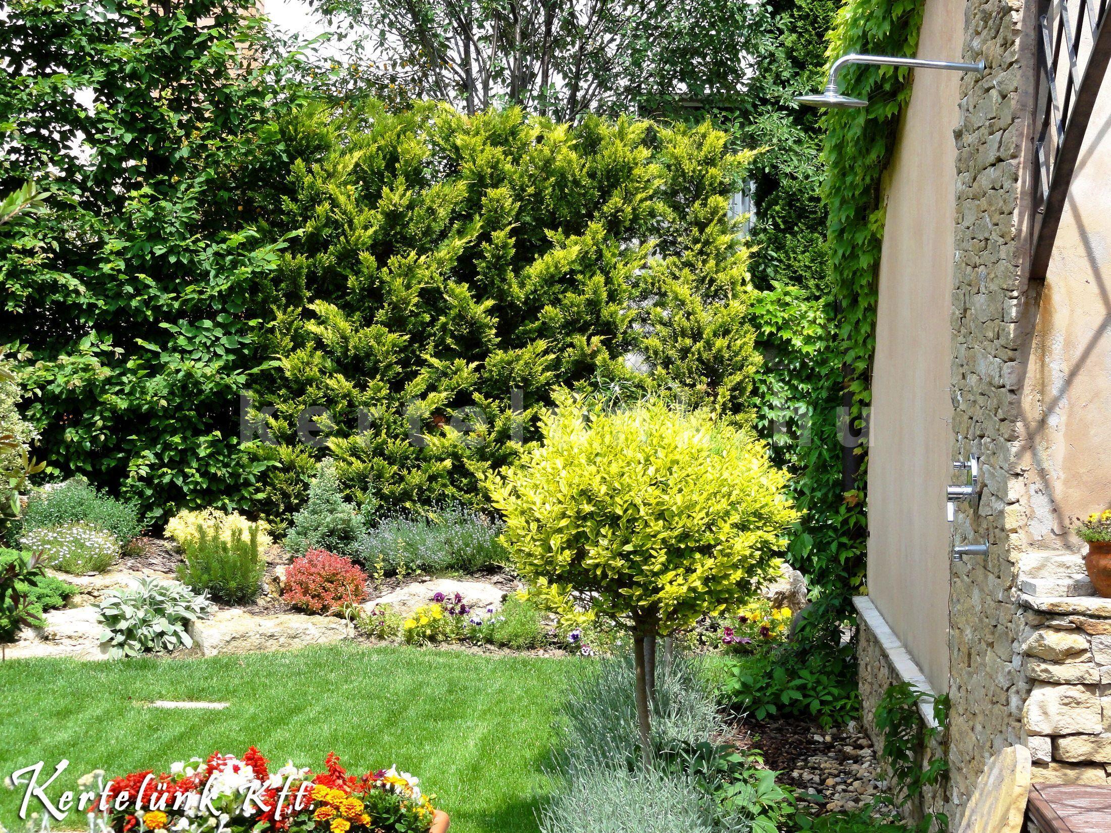 Részlet a mediterrán stílusú kertből.