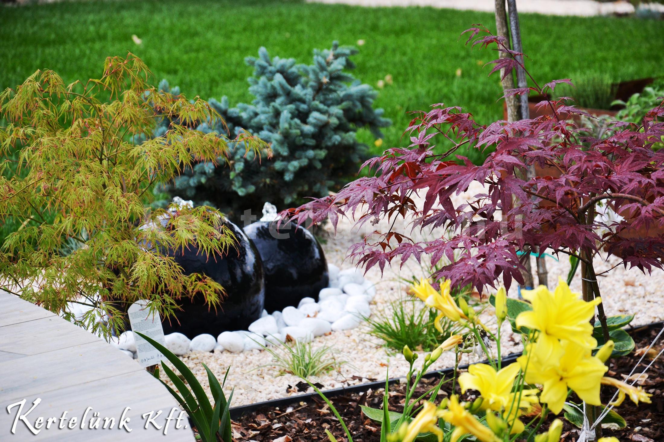 Ez a kert modern stílusjegyeket követ minden apró részletében.