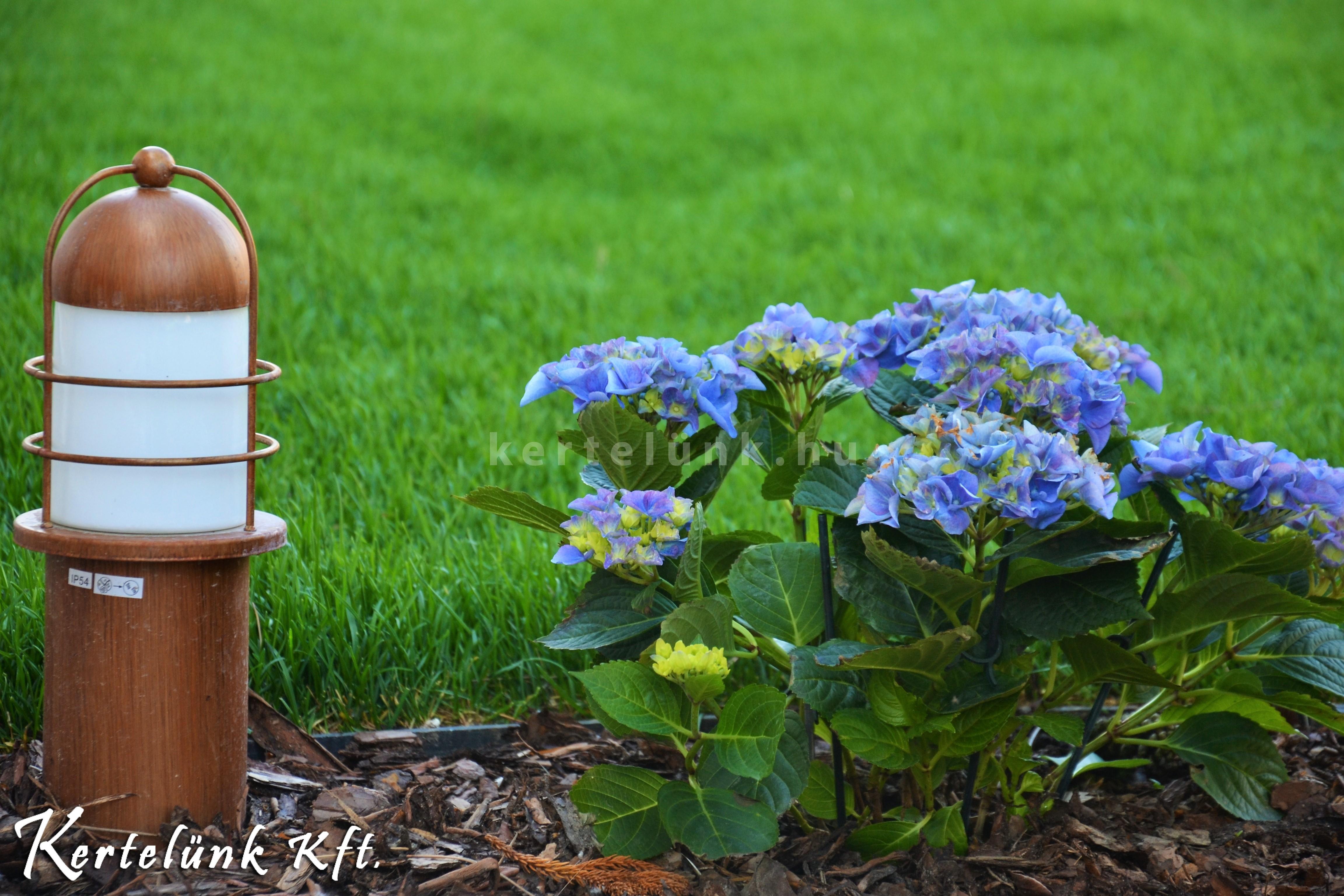 A kerti világítás harmonizál a ház stílusával.