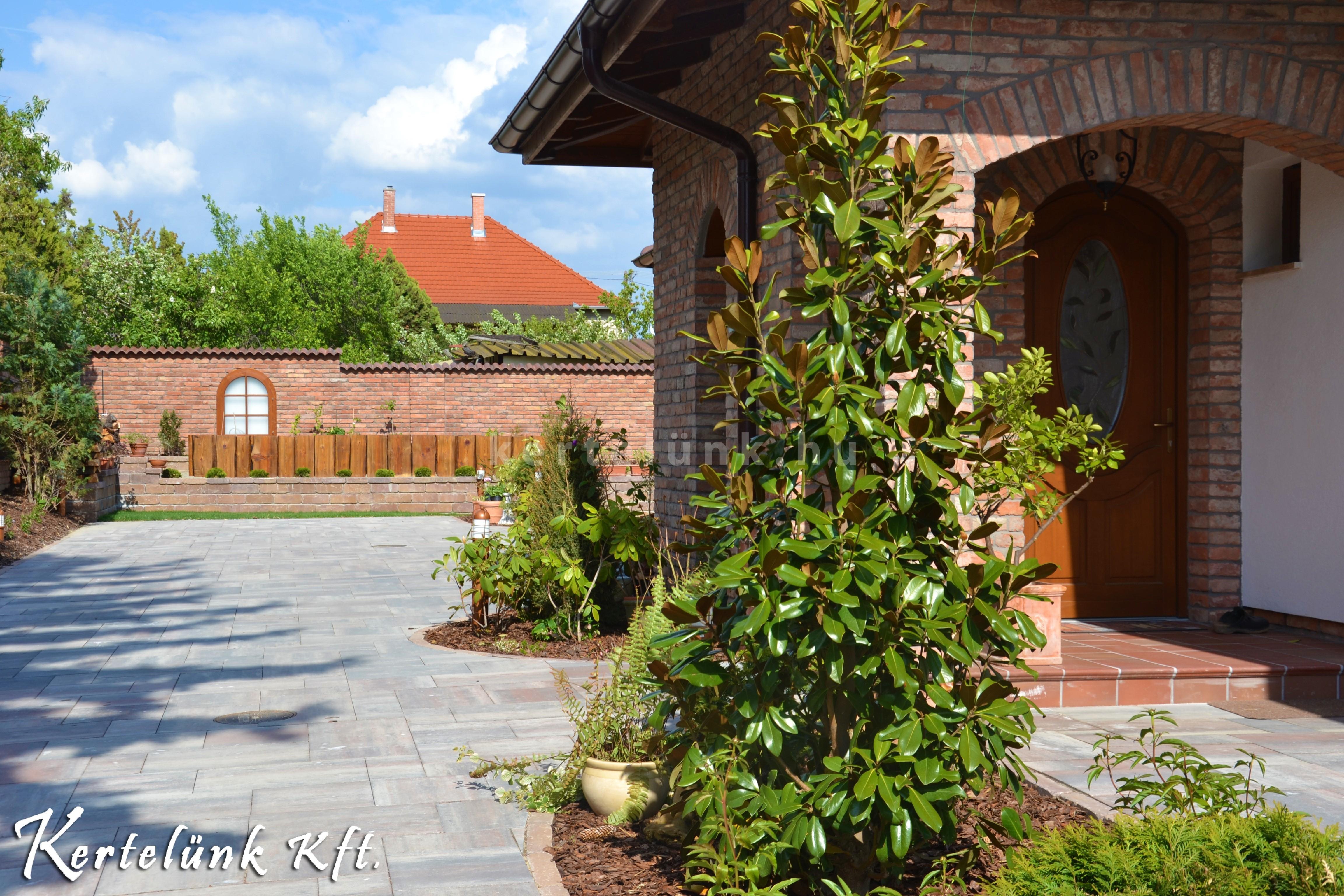 Előszeretettel alkalmazunk magnóliát mediterrán stílusú kertjeinkben.