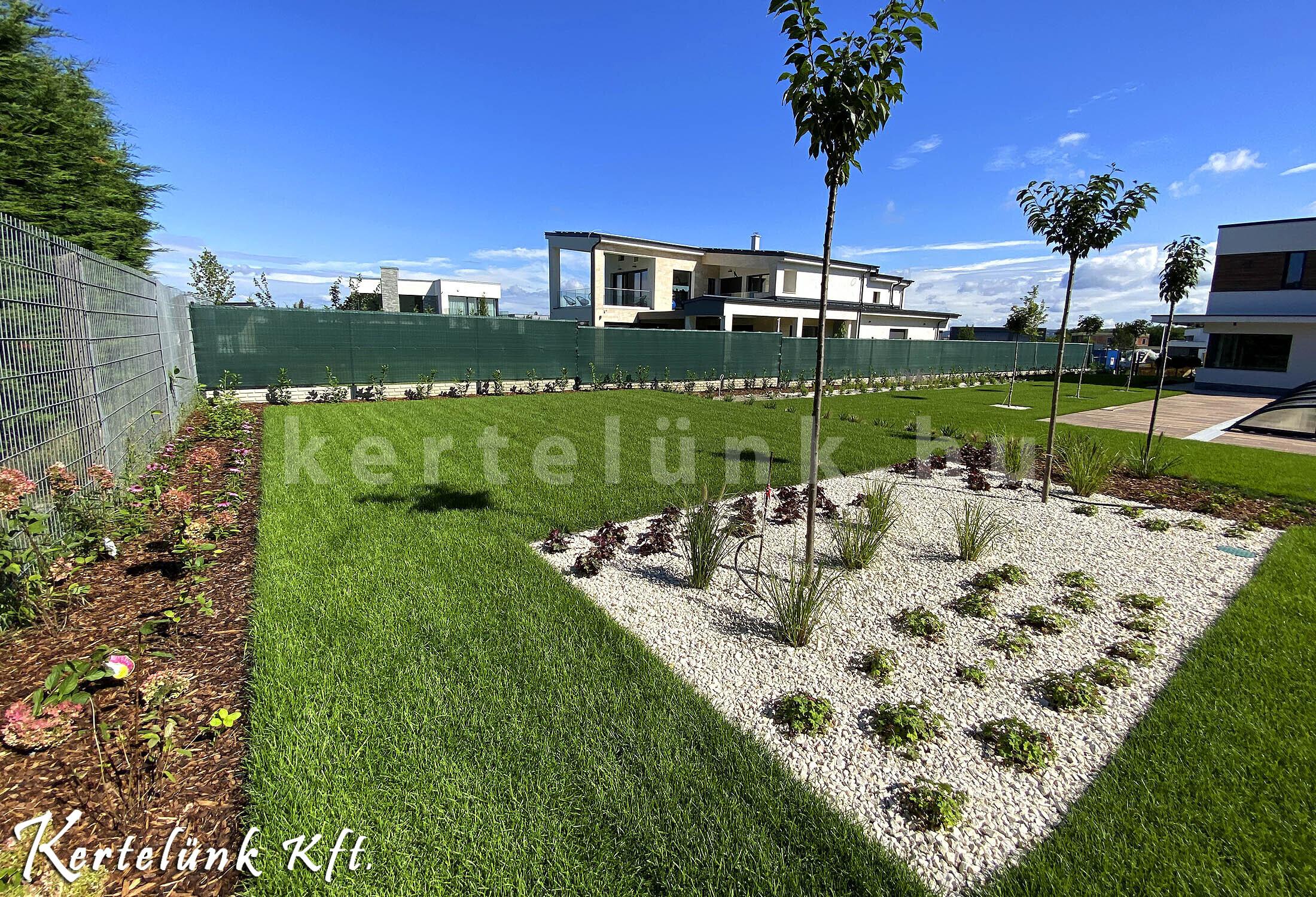 Modern kerti növények.