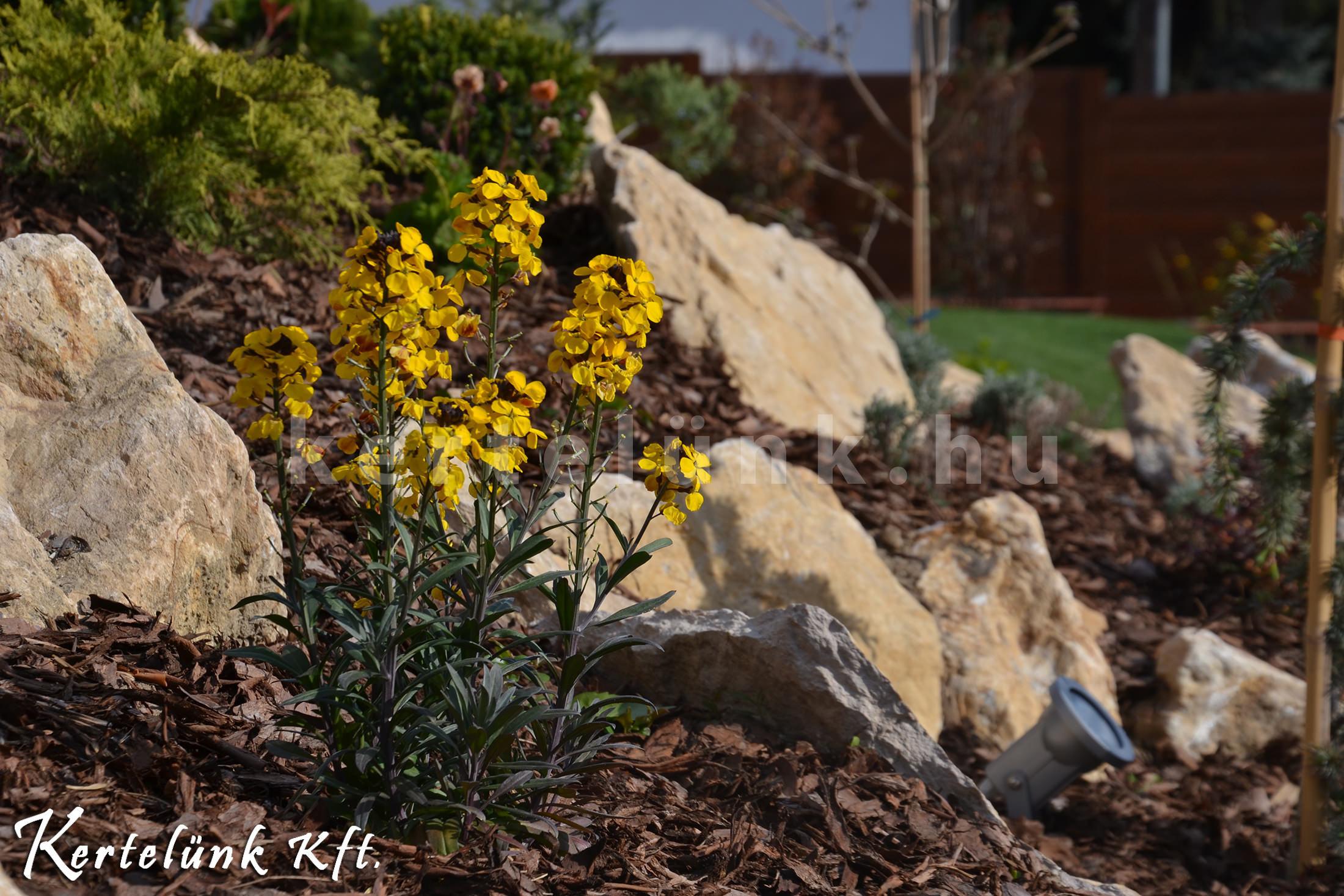 Nyers kő, fenyőkéreg, és színes virágok kavalkádja.