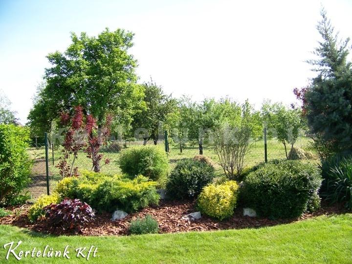 Egy lapos sziklakertnek is jut elég hely a vidéki kertekben.