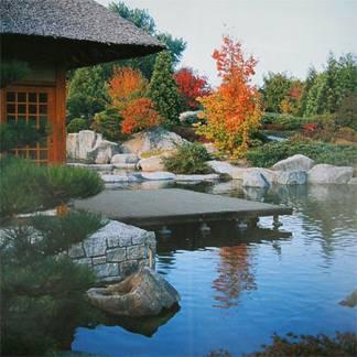 egy japán kerti tó