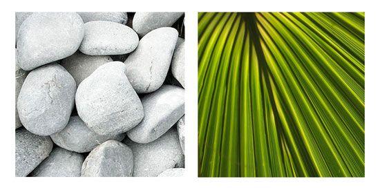 Dekorkavics a modern kert egyik jellegzetessége