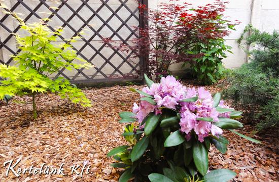 Színes virágráccsal