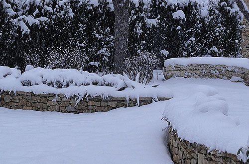 teljes nyugalomban a téli kert