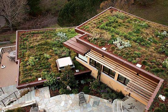 egy modern zöldtető